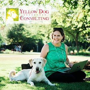 Yellow Dog Consulting
